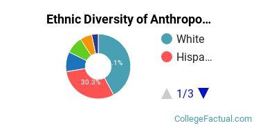 Ethnic Diversity of Anthropology Majors at University of California - Santa Barbara