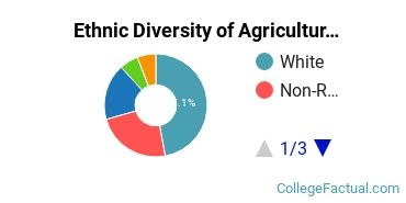 Ethnic Diversity of Agricultural Economics & Business Majors at University of Florida