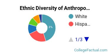 Ethnic Diversity of Anthropology Majors at University of Florida