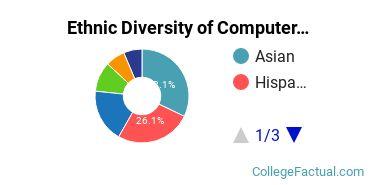 Ethnic Diversity of Computer & Information Sciences Majors at University of Houston