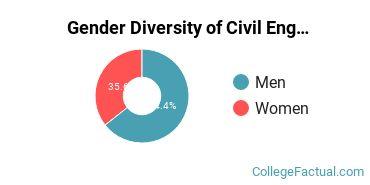 UIUC Gender Breakdown of Civil Engineering Bachelor's Degree Grads