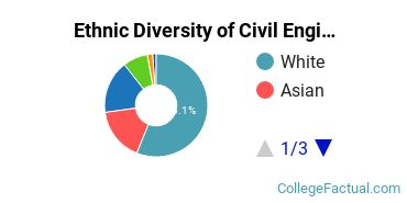 Ethnic Diversity of Civil Engineering Majors at University of Illinois at Urbana - Champaign