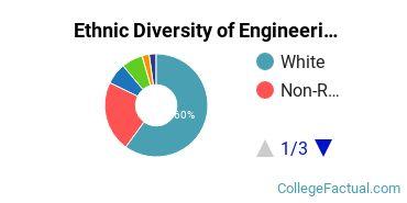 Ethnic Diversity of Engineering Majors at University of Kentucky