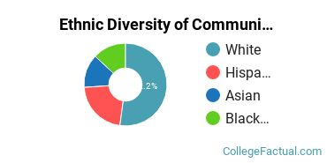 Ethnic Diversity of Communication Sciences Majors at University of Maryland - College Park