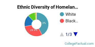 Ethnic Diversity of Homeland Security, Law Enforcement & Firefighting Majors at University of Maryland - University College