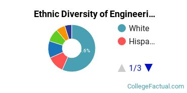 Ethnic Diversity of Engineering Majors at University of New Orleans