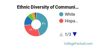 Ethnic Diversity of Communication & Journalism Majors at University of North Texas
