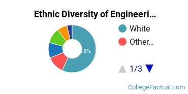 Ethnic Diversity of Engineering Majors at University of Oklahoma Norman Campus