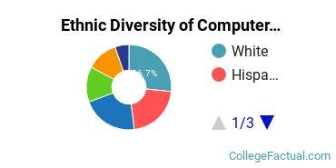 Ethnic Diversity of Computer Science Majors at University of San Francisco