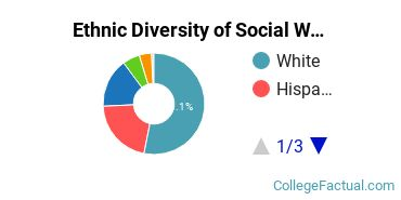 Ethnic Diversity of Social Work Majors at University of South Florida - Main Campus