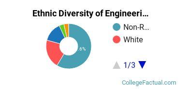 Ethnic Diversity of Engineering Majors at University of Tulsa