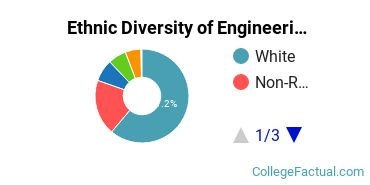 Ethnic Diversity of Engineering Majors at University of Utah