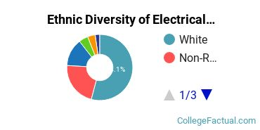 Ethnic Diversity of Electrical Engineering Majors at Virginia Tech