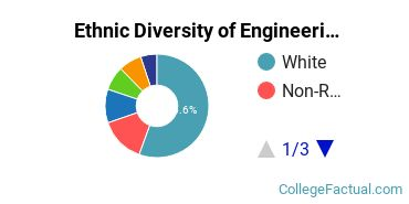 Ethnic Diversity of Engineering Majors at Washington University in St Louis