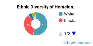 Ethnic Diversity of Homeland Security, Law Enforcement & Firefighting Majors at Wayne State University