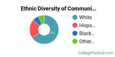 Ethnic Diversity of Communication & Journalism Majors at Western Connecticut State University